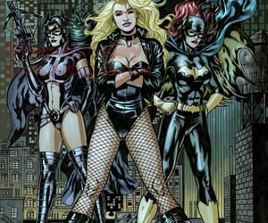 dc comics and birds of prey image