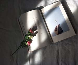 book, flower, and asthetic image