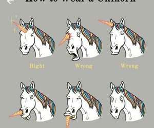 unicorn, unihorn, and funny image