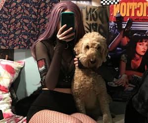 dog, fashion, and grunge image