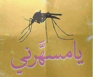 arabic, zzzz, and mosquitoes image