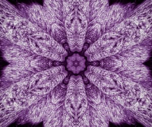 abstract, lavender, and lilac image