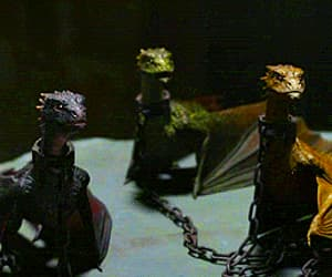dragons, gif, and game of thrones image