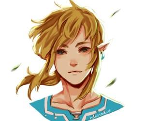 Legend of Zelda, link, and botw image