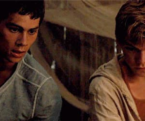 baby, dylan, and newt image