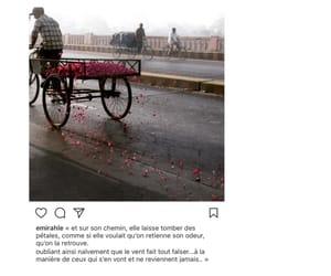 amour, muslim, and paris image