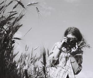 camera, film, and girl image