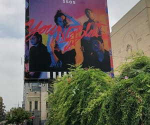 album, promo, and youngblood image