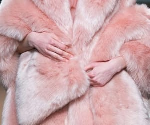 pelt and pink image