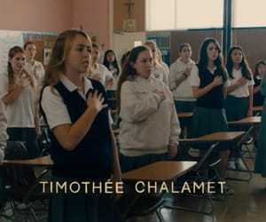 lady bird, meme, and timothee chalamet image