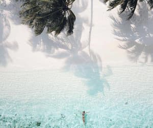 summer, beach, and palmtrees image