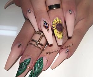 long, nails, and coffin nails image