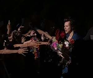 harry, styles, and msg image