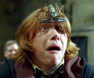 Tenia que ser un Weasley