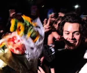 Harry Styles, harry, and flowers image