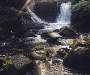 falls, park, and Tasmania image