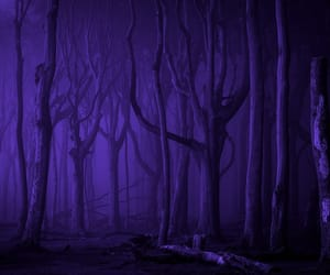 blue, Darkness, and forest image