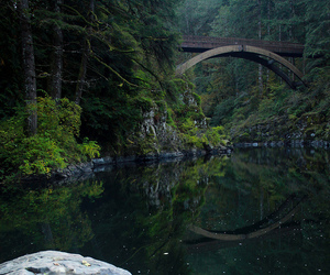 nature and bridge image