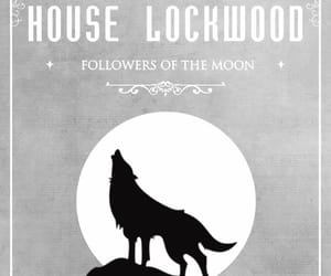 the vampire diaries, wolf, and lockwood image