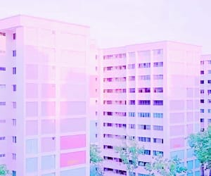 edit, feed, and pink image