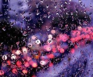 rain, light, and photography image
