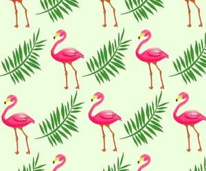flamingo, wallpaper, and green image