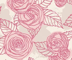 pink, rose, and drawing image