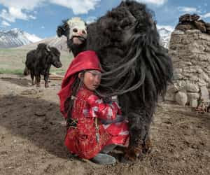 Afghanistan, asian, and culture image