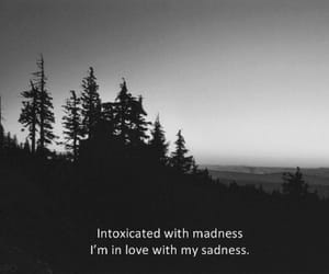 sadness, quotes, and madness image