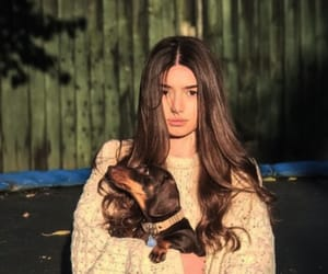 actress, dogs, and Hot image