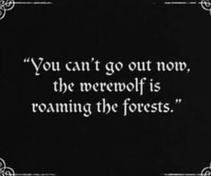 werewolf, forest, and quotes image
