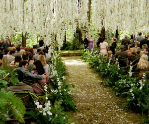 bella swan, flowers, and boda image