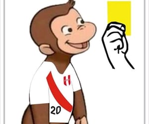 curioso, monkey, and world cup image
