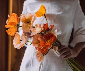 flowers, orange, and vintage image