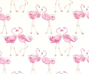 flamingo, pattern, and pink image