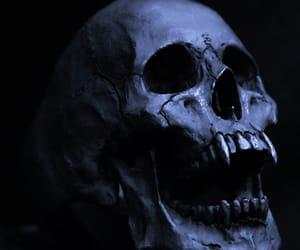 skull, bones, and dark image