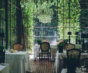 aesthetic, free, and greenery image