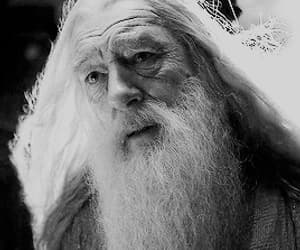 albus dumbledore, draco malfoy, and gif image