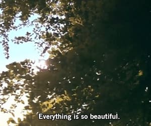 beautiful, gif, and nature image