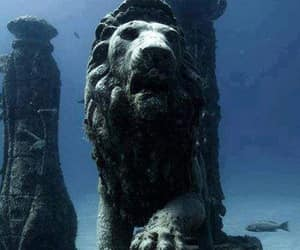 lion, egypt, and underwater image