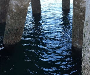 docks, nature, and water image