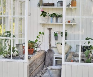 cozy, shed, and garden image