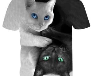 black, kitty, and shirt image
