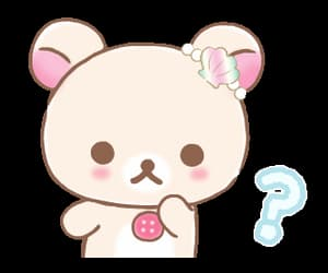 bear, kawaii, and sanrio image