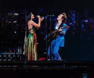 Harry Styles and kacey musgraves image