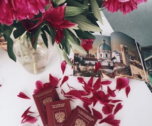 flower, passport, and trip image