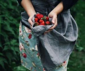 photography and strawberry image