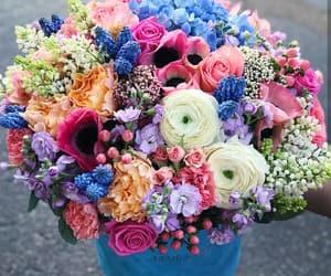 beautiful, box, and colorful image
