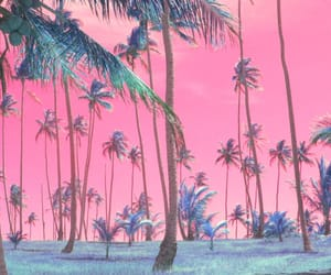 beach, love it, and palm trees image