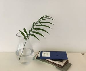 aesthetic, pale, and plants image